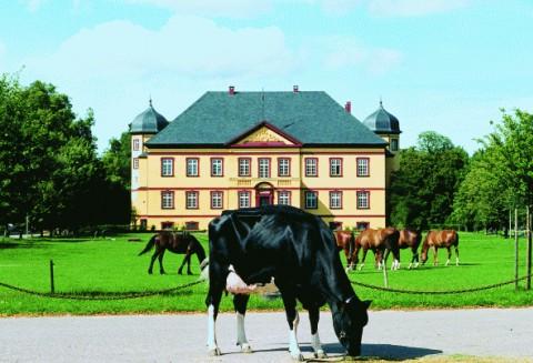 Hotel/Zimmer - Ostsee - Festland - Gut Hohen Luckow
