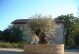 Casa Staccata