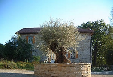 Ferienhaus - Alta Langhe - Casa Carlin