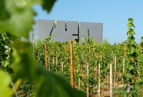 Loisium –  Weinbau und Architektur