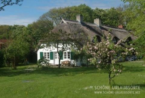 Ferienhaus - Ostsee Insel Rügen - Reethaus Rosengarten