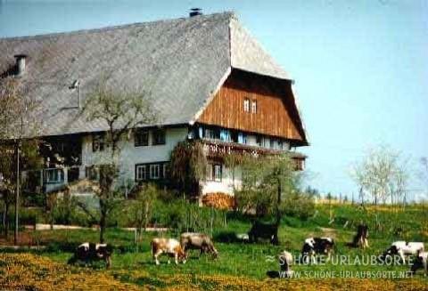 Mooshof  Bio-Ferienbauernhof im Schwarzwald