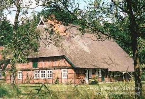Ferienwohnung - Lüneburger Heide - Hof Höppen unter Reeth