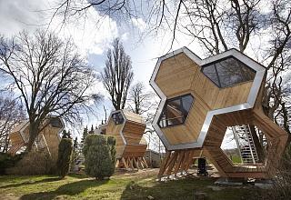 Grüne Wiek – design Baumhausdorf Beckerwitz