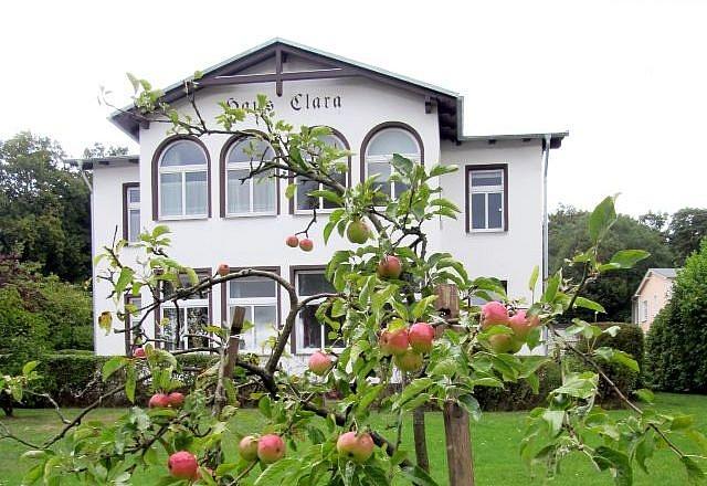 Haus Clara - Insel Usedom