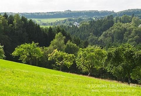 Ferienhaus - Siegerland - Schöne Bleibe