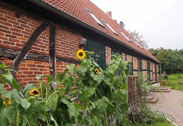 Ferienwohnung - Ostsee - Festland - Hof-LandART Pfarrhaus Russow
