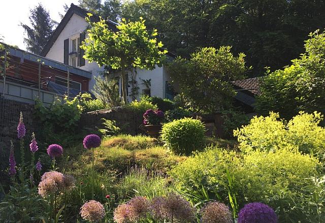 Waldhaus Landscheid